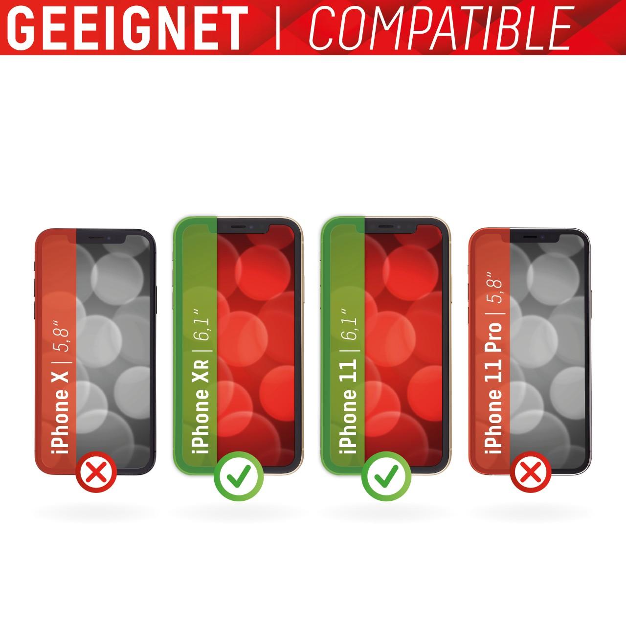 iPhone XR/11 2in1 Schutzglas (antibakteriell/ Bluelight)
